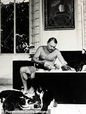 Ernest Hemingway pictured at breakfast with a group of polydactyl cats feeding at his feet
