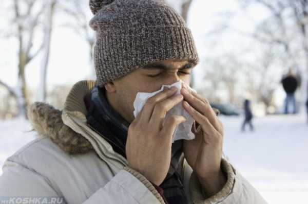 Может ли кот заразиться от человека простудой – Могут ли коты заразиться от человека простудой